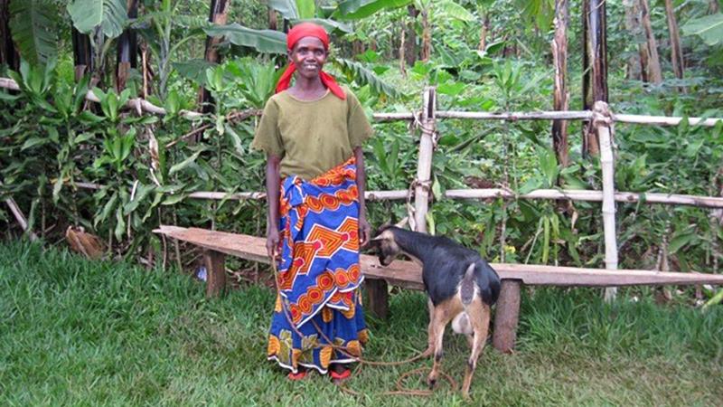 Burundi - Goats for Families