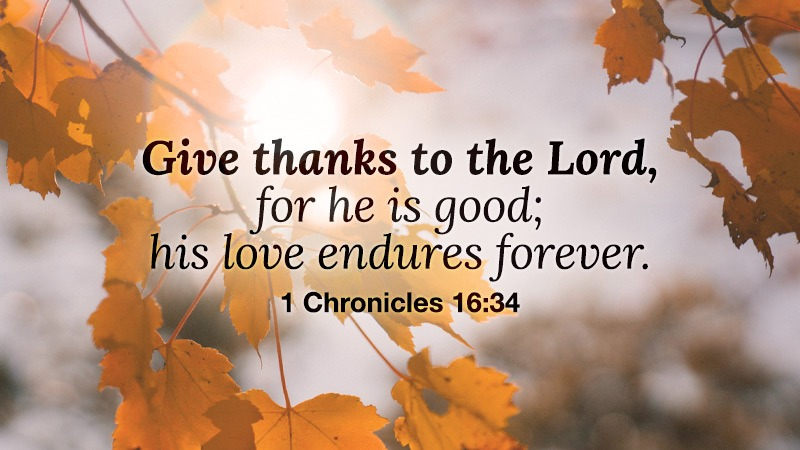 Give thanks to the Lord, for he is good; his love endures forever. (1 Chronicles 16:34)